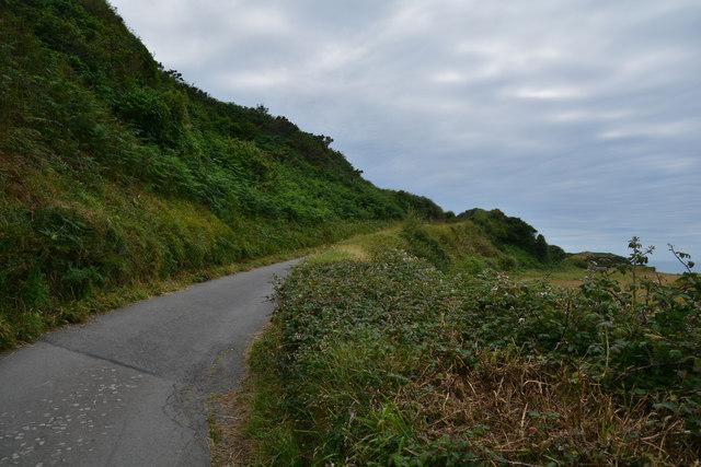 North Devon : Small Road