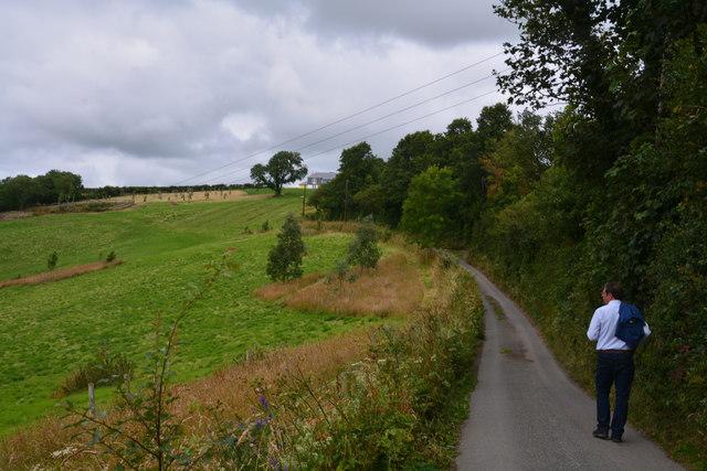Cornwall : Country Lane