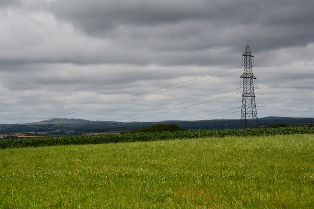 Cornwall : Grassy Field