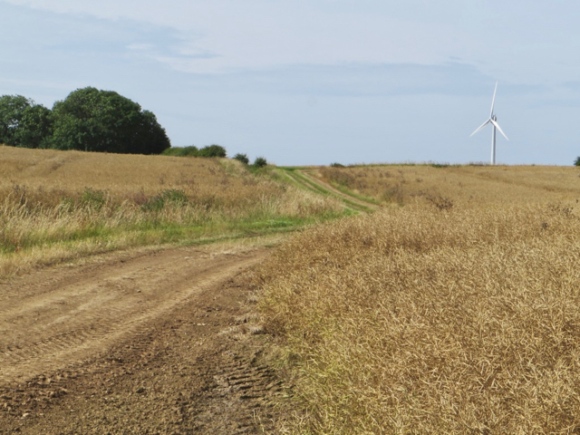 Farm track near Out Newton