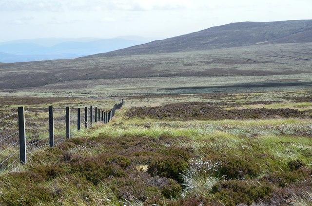Boundary fence and Craigengar