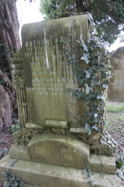 Ivy on the Headstone