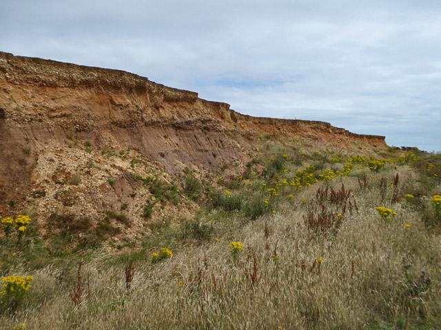 Upper cliff, Roughland Cliff