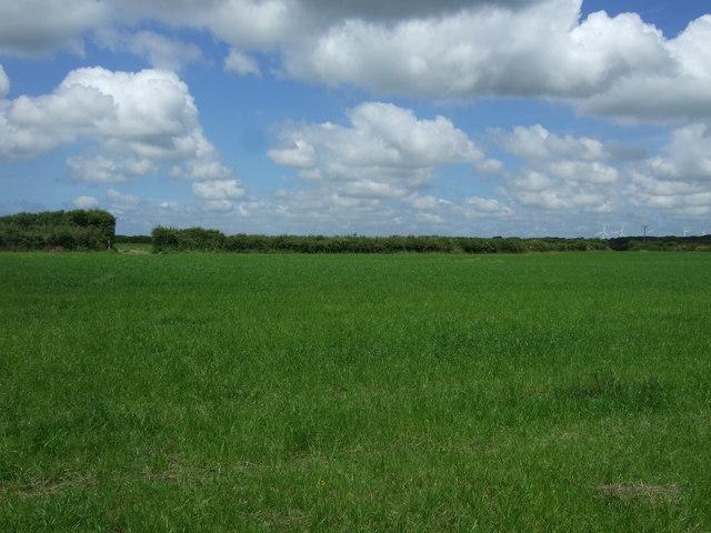 Farmland near Trerise