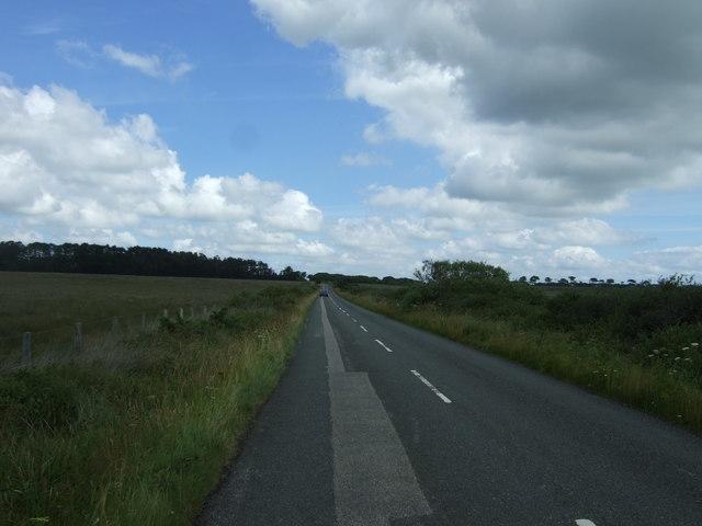 Minor road, Lizard Peninsula