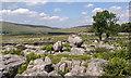 SD7578 : Sleights Pasture Rocks by Greg Fitchett
