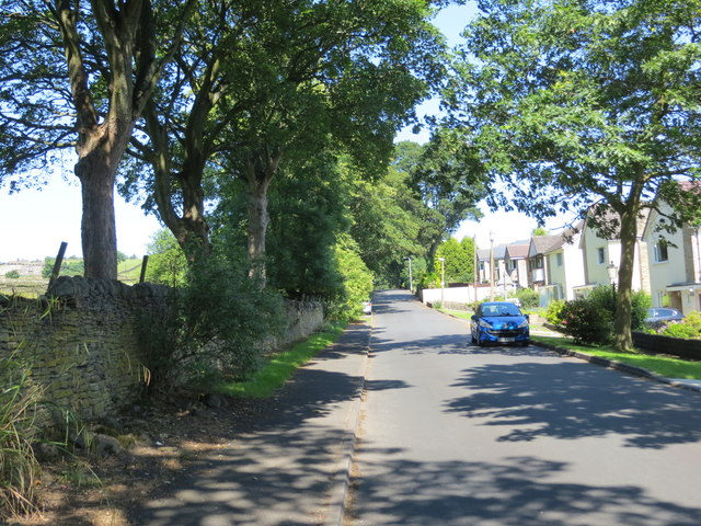 Hollins Lane at High Utley, Keighley