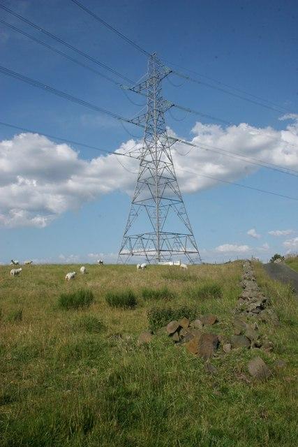 Sheep and pylon, Dyke Hill