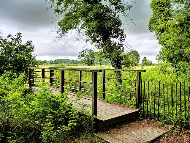 Bridge over Drain on Mottisfont Estate