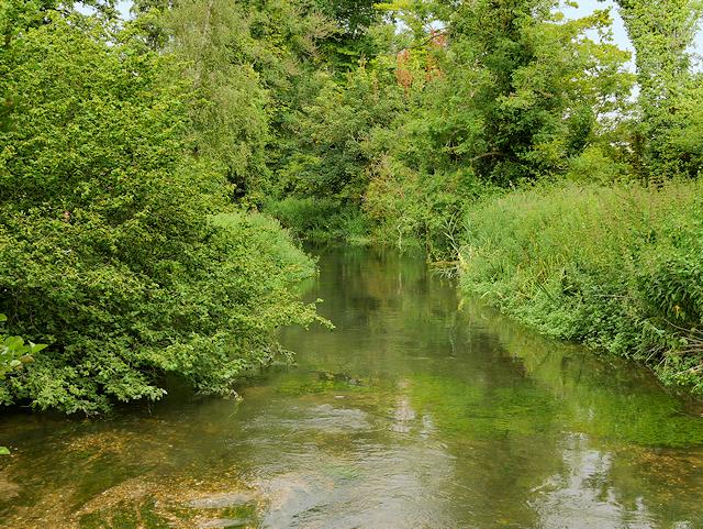 River Test, Mottisfont Estate