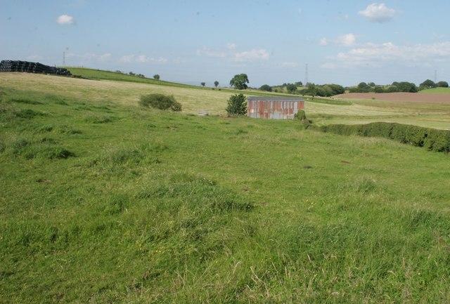 Fields beside South Craigton