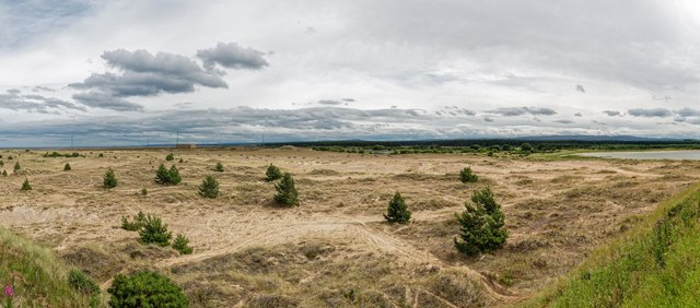 Sand dunes and scrubland Whiteness Head