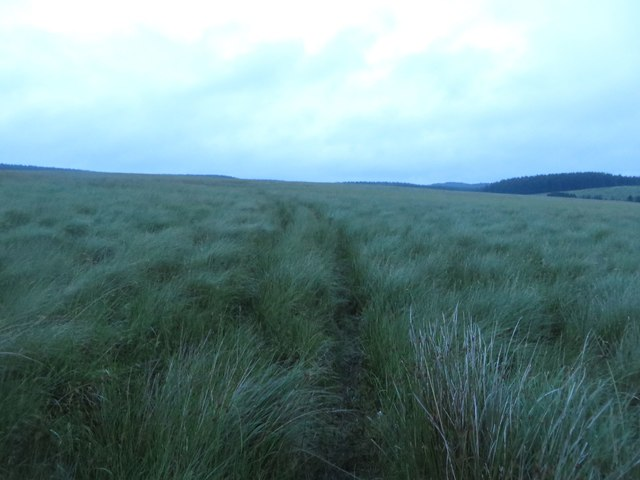 Footpath west of Scotchcoulthard