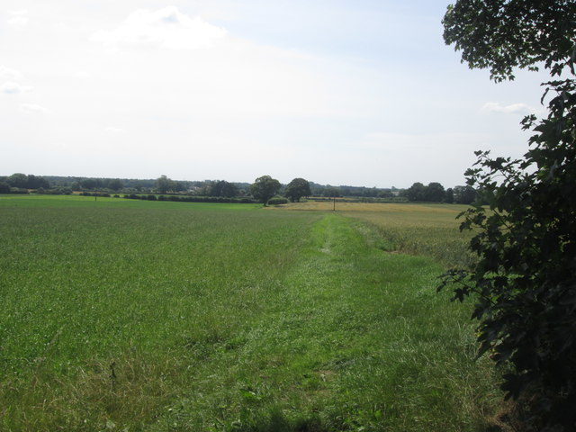Footpath towards Cottage Farm from Crayke Road