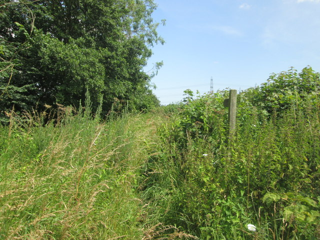 Footpath towards Keeper's Plantation from Lady Carr