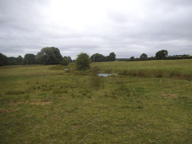 Field by the River Ver, Redbournbury