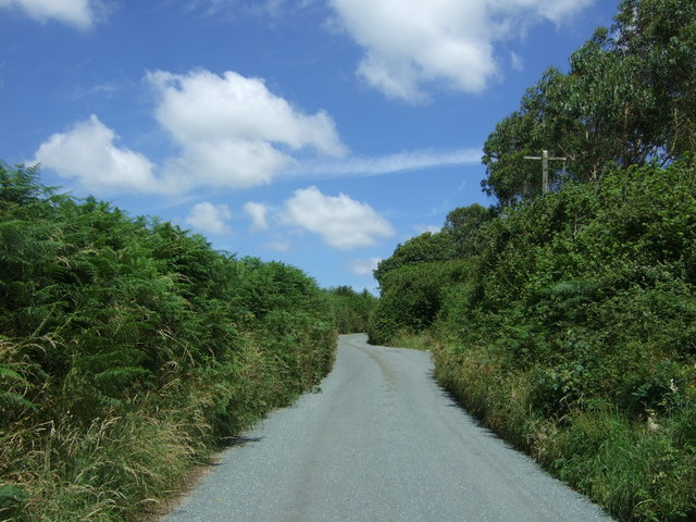 Lane near Napheane Farm