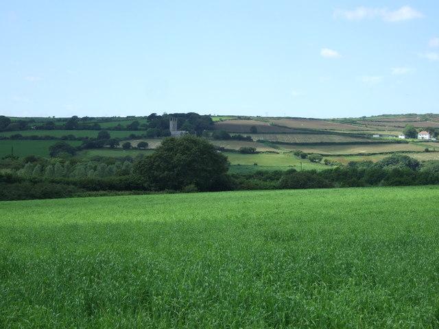 Crop field near Lamanva
