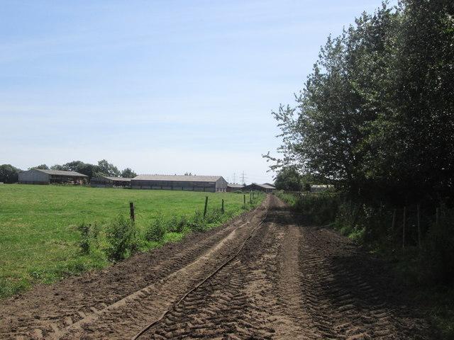 Approaching Moss End Farm