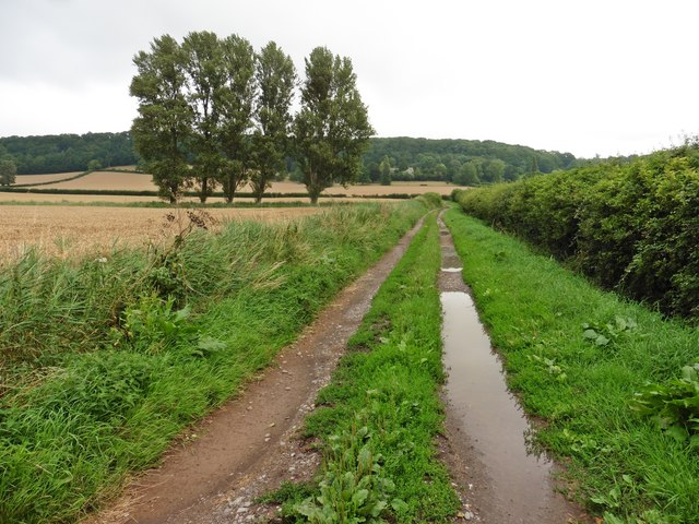 Track to Ivy Thorn Manor Farm