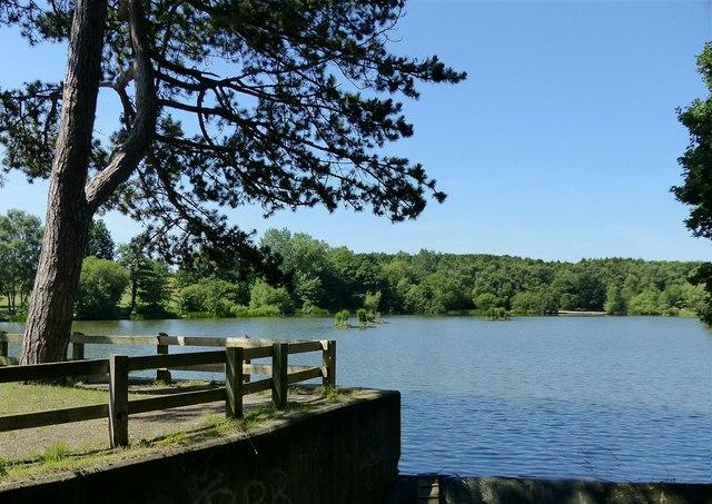 Osborne's Pond, Shipley Park