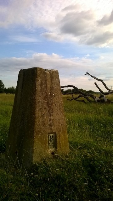 Trig Point above Welham Green