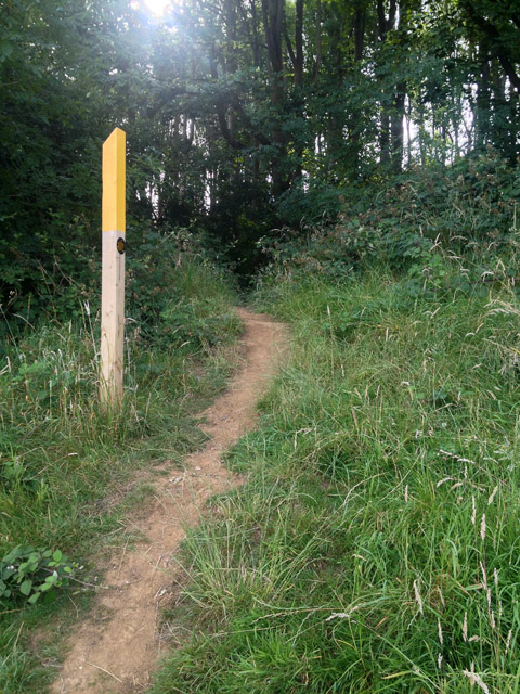 Footpath marker post in Stathern Wood