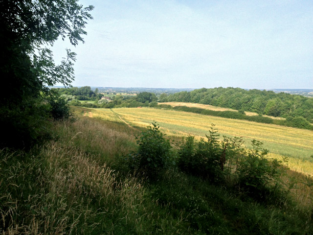 View from Stathern Wood