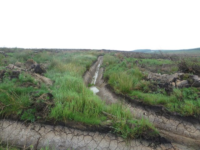 Drainage channels near Brown Rigg