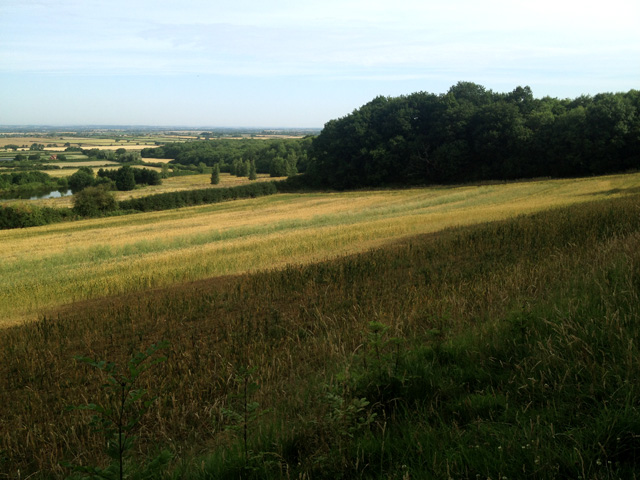 Looking down the Vale of Belvoir from Stathern Wood