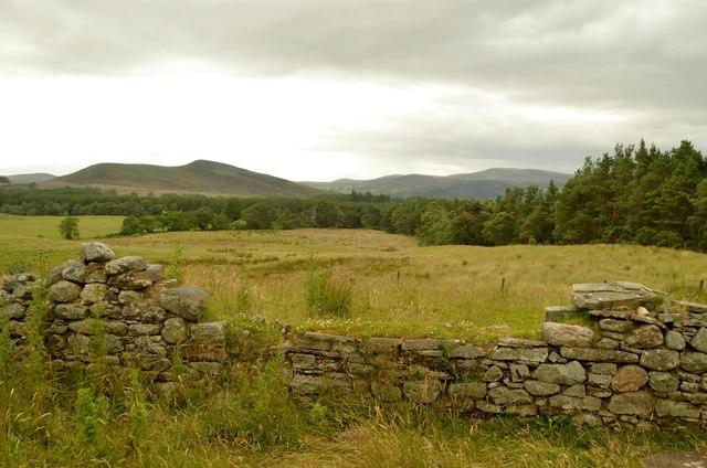 Ruins of old Farmstead near Badninish, Sutherland