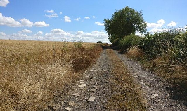 Farm track near Lodge Farm