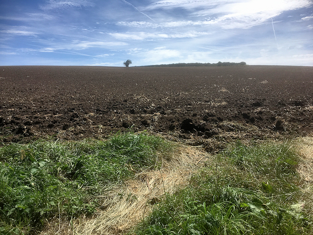Ploughed Field near Easton