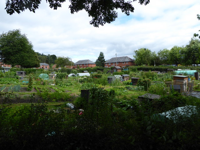 Gatacre Allotment site, Oswestry