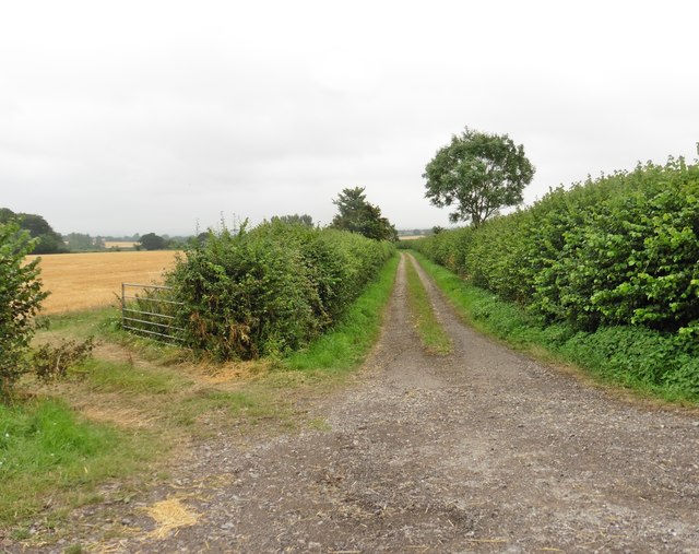 Farm track, south of the B3153
