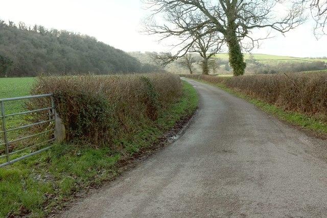 Lane along the Mole valley