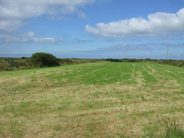Silage field, Lizard Peninsula