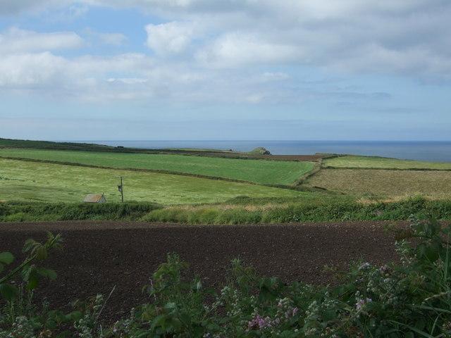 Coastal fields, Lizard Peninsula