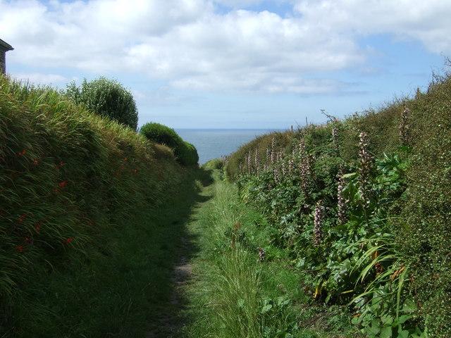 Track (bridleway), Lizard Peninsula