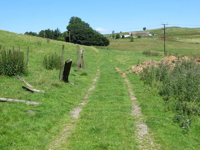 Track and Footpath from Noyna End to Throstle Nest