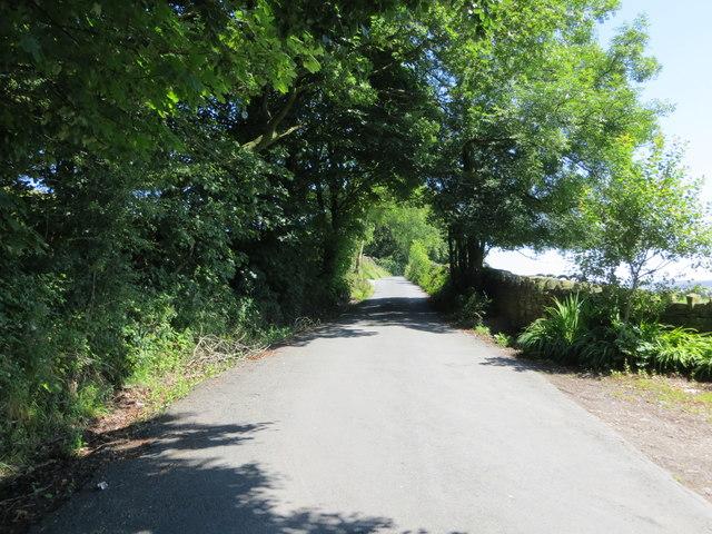 Noyna Road near Higher Broach