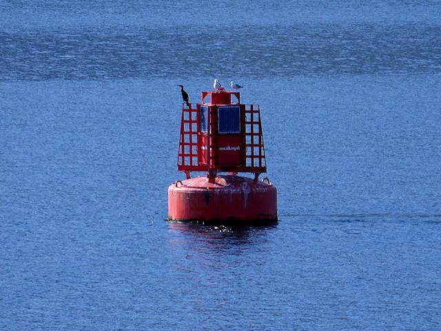 Port Marker Buoy in Loch Linnhe
