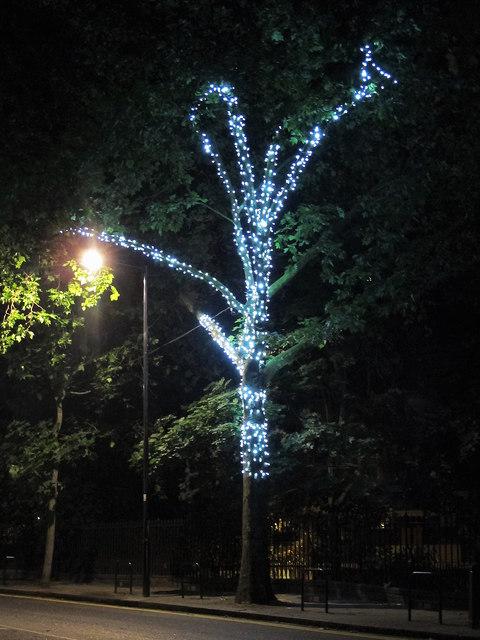 Illuminated tree, Rosebery Avenue, EC1