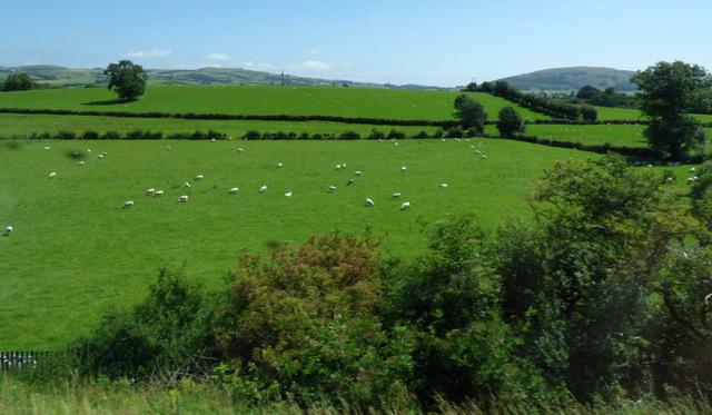 Farmland near Deepthwaite