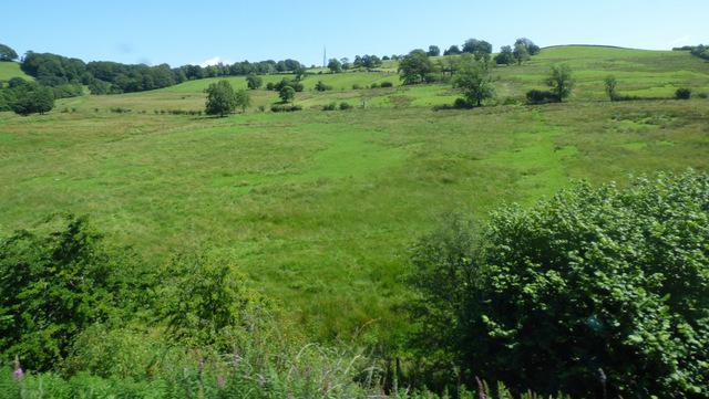 Farmland near Kendal Park