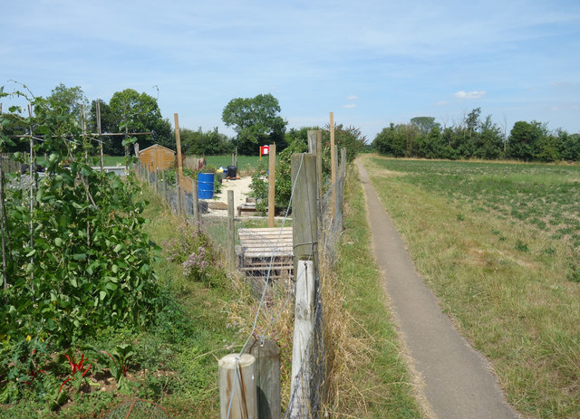 Path by the Allotments