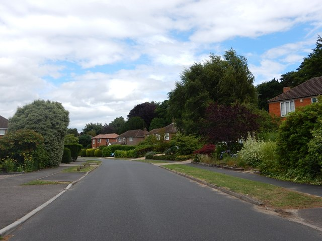 Sunninghill - Woodend Drive