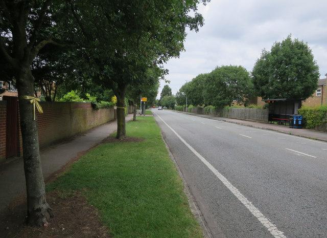 Speed camera on Histon Road