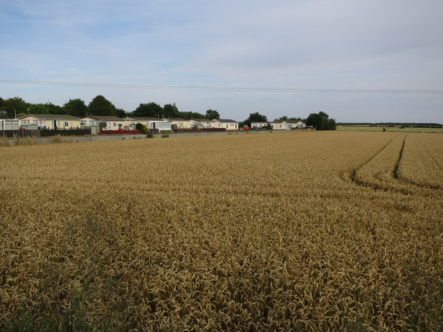 Wheat field and park homes
