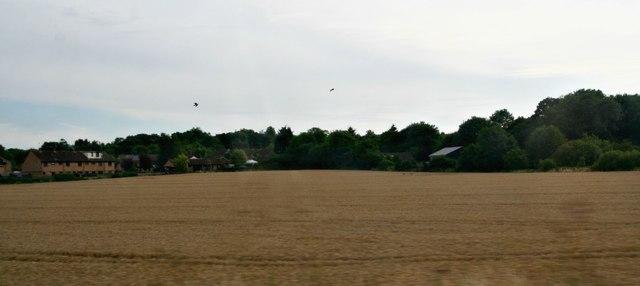 Elsenham west, from the railway